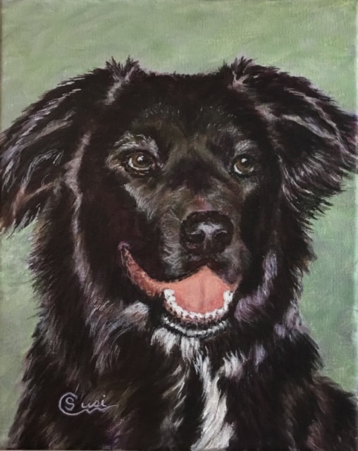 Acrylic Pet Portrait of  a Black and white dog named Hunter