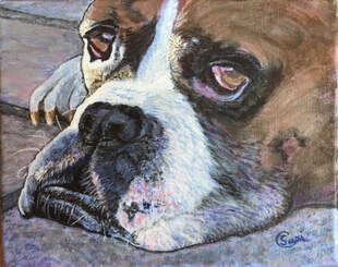 Acrylic portrait of a Boxer Dog by Susie Caron